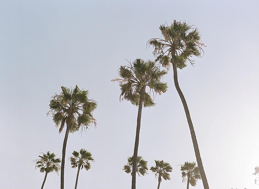 RKP_California_019.jpg