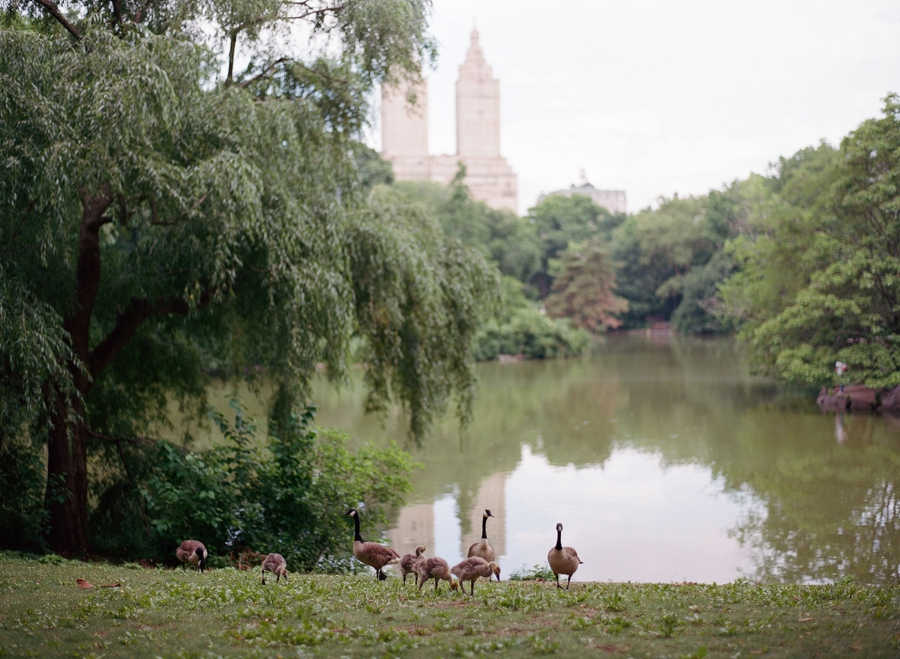 Central_Park_Engagement_Session_NYC_AN_10.jpg