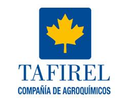 tafirel.jpg