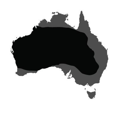 Totemica_Kangaroo_Distribution