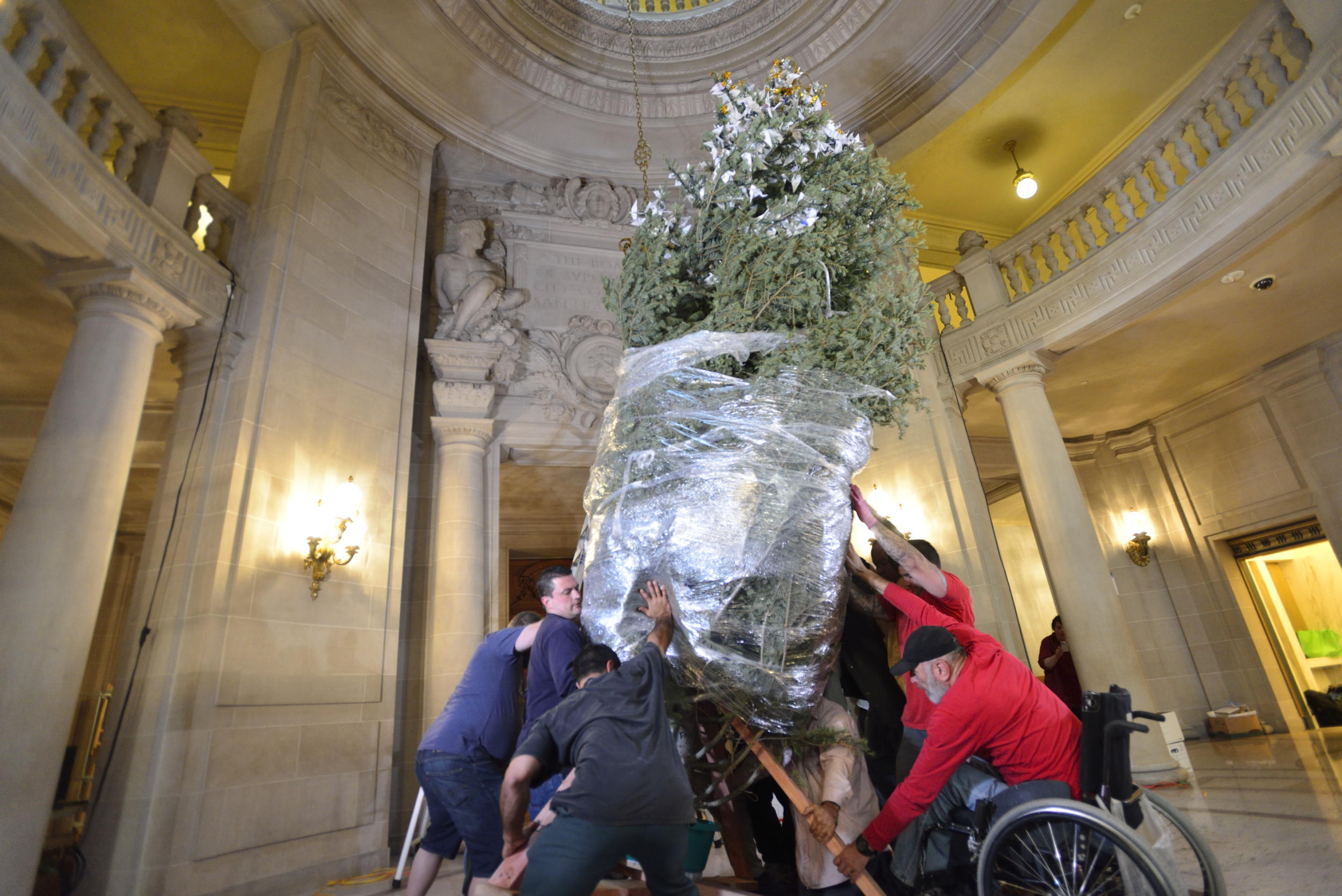 Volunteers raise the RWF World Tree of Hope in San Francisco City Hall.