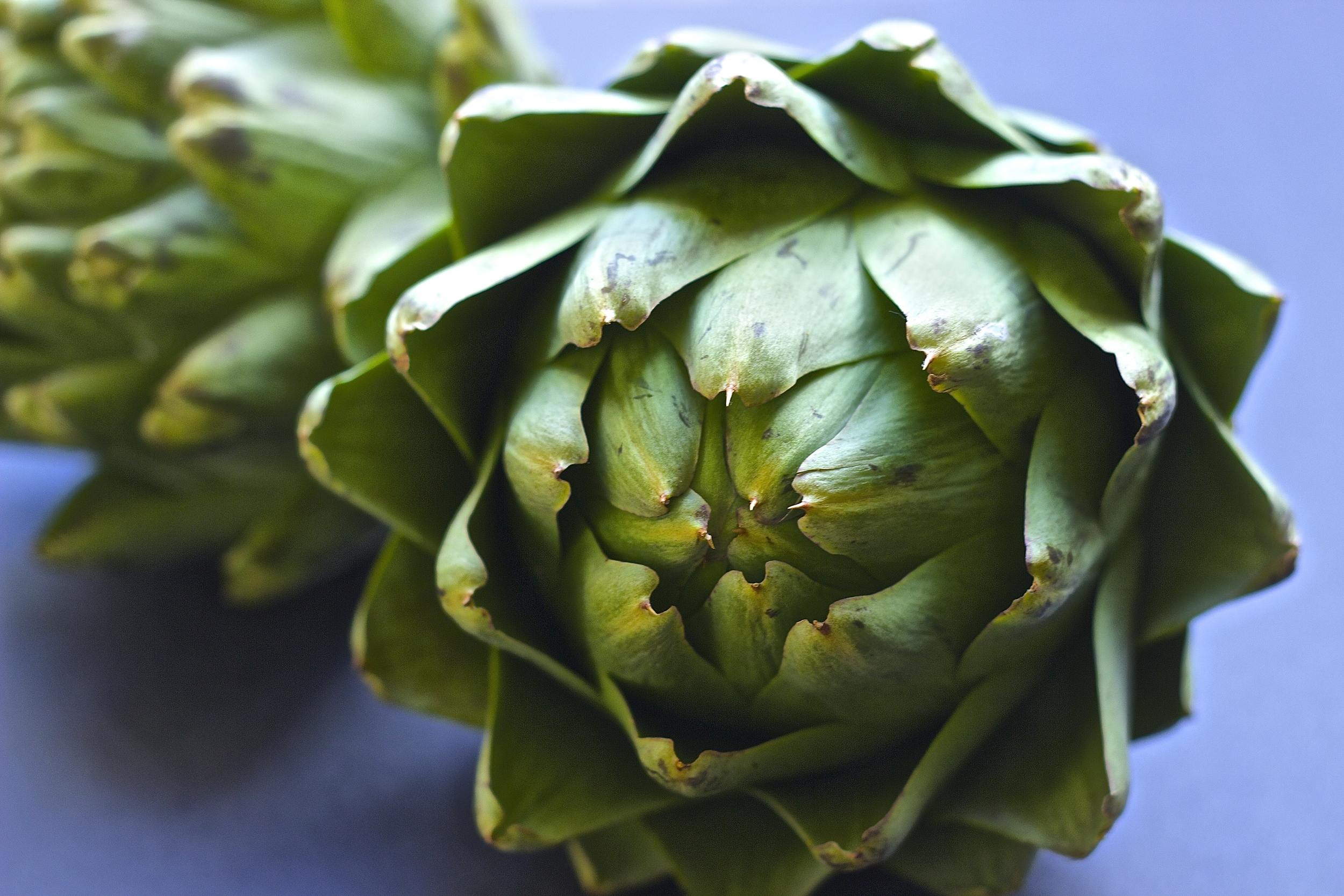 Fresh Artichokes with Garlicky Lemon Aioli | Kneading Home
