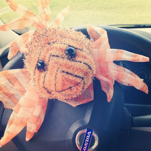 Larry the Lionfish is all set for the trip too!