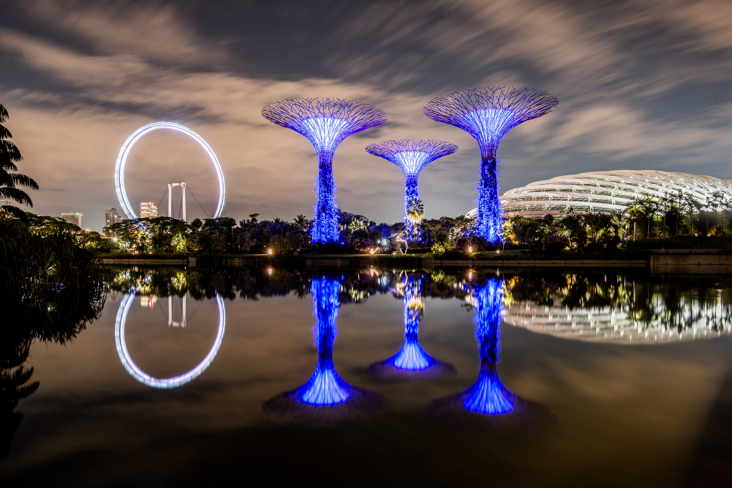 Supertrees Two