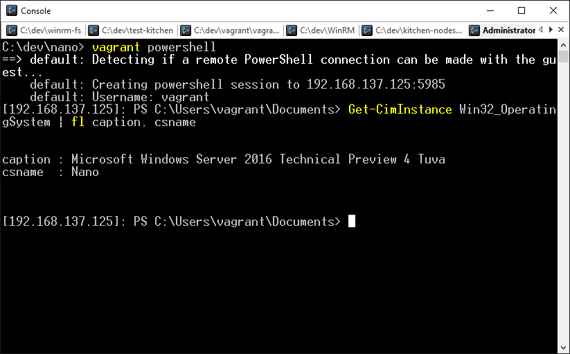 "Using ""vagrant powershell"" to remote to my windows nano server"