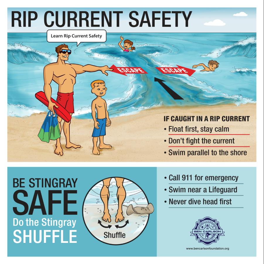 Free Handout on Ocean Safety