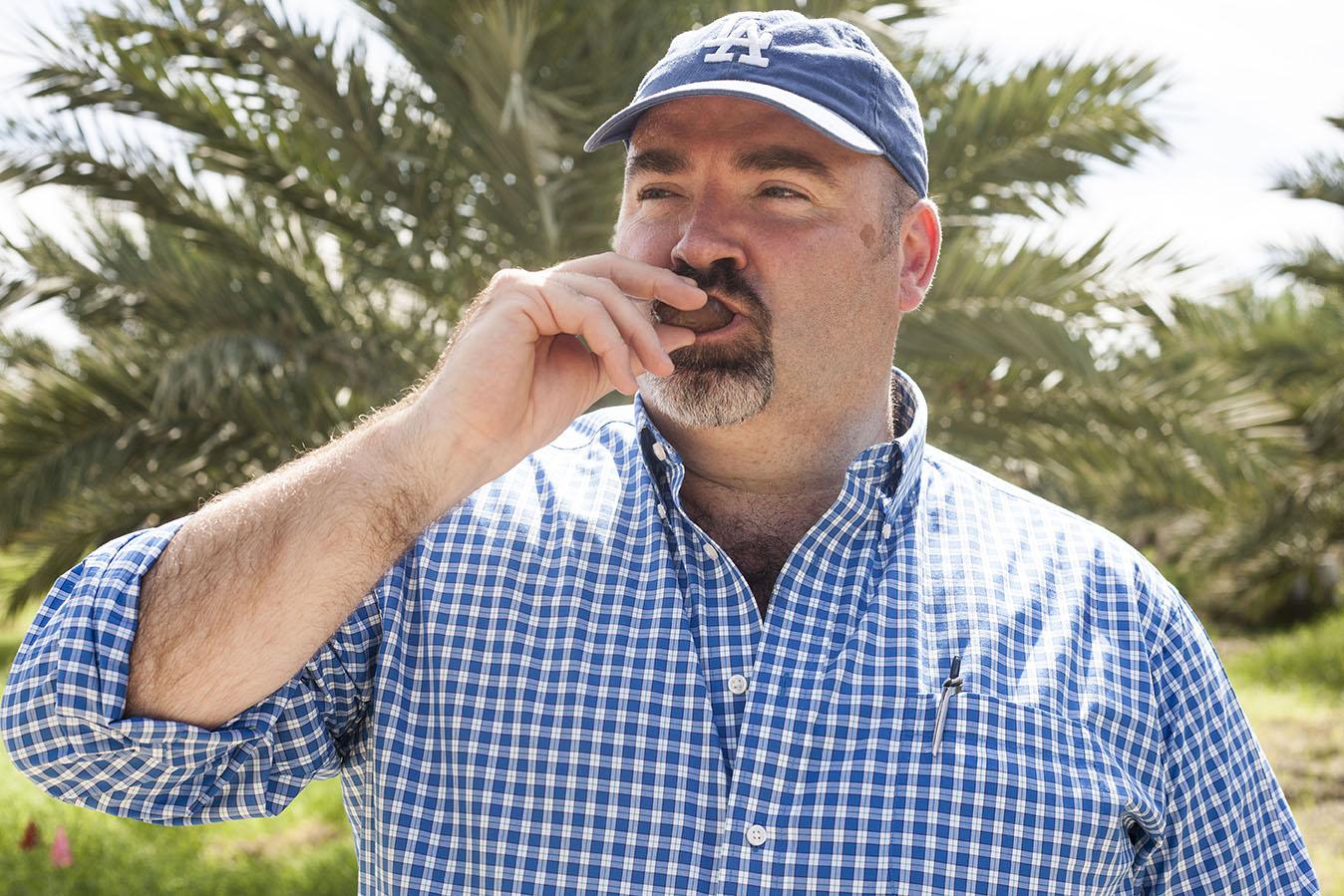 Neil Davey eats a freshly picked Medijool Date