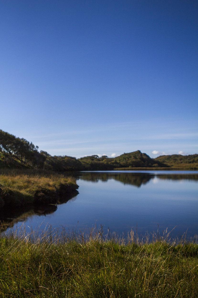 Ardbeg's water source