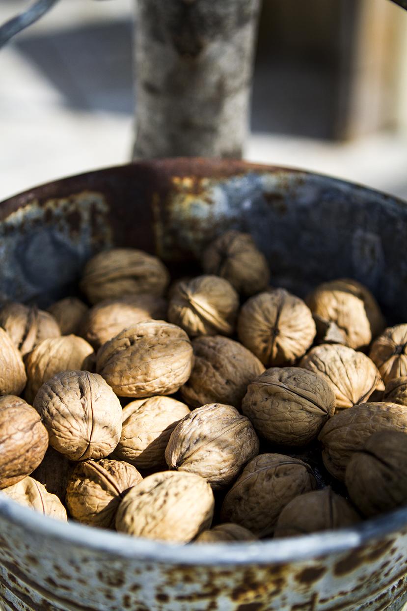 fresh italian walnuts.jpg