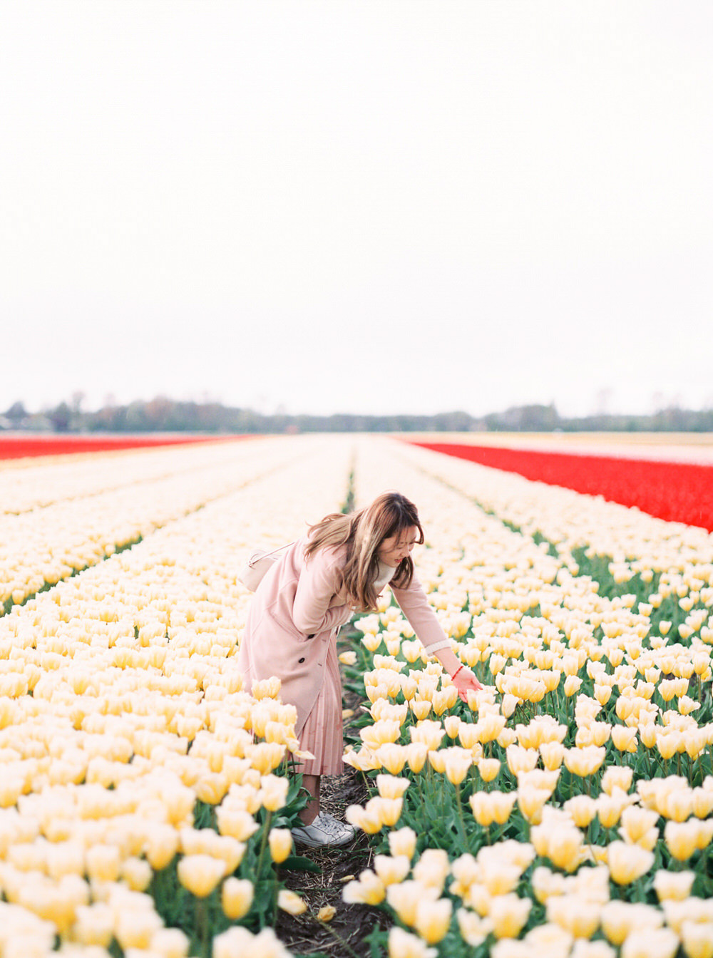 Keukenhof Lisse Tulip Field Portrait Photography - CHYMO & MORE