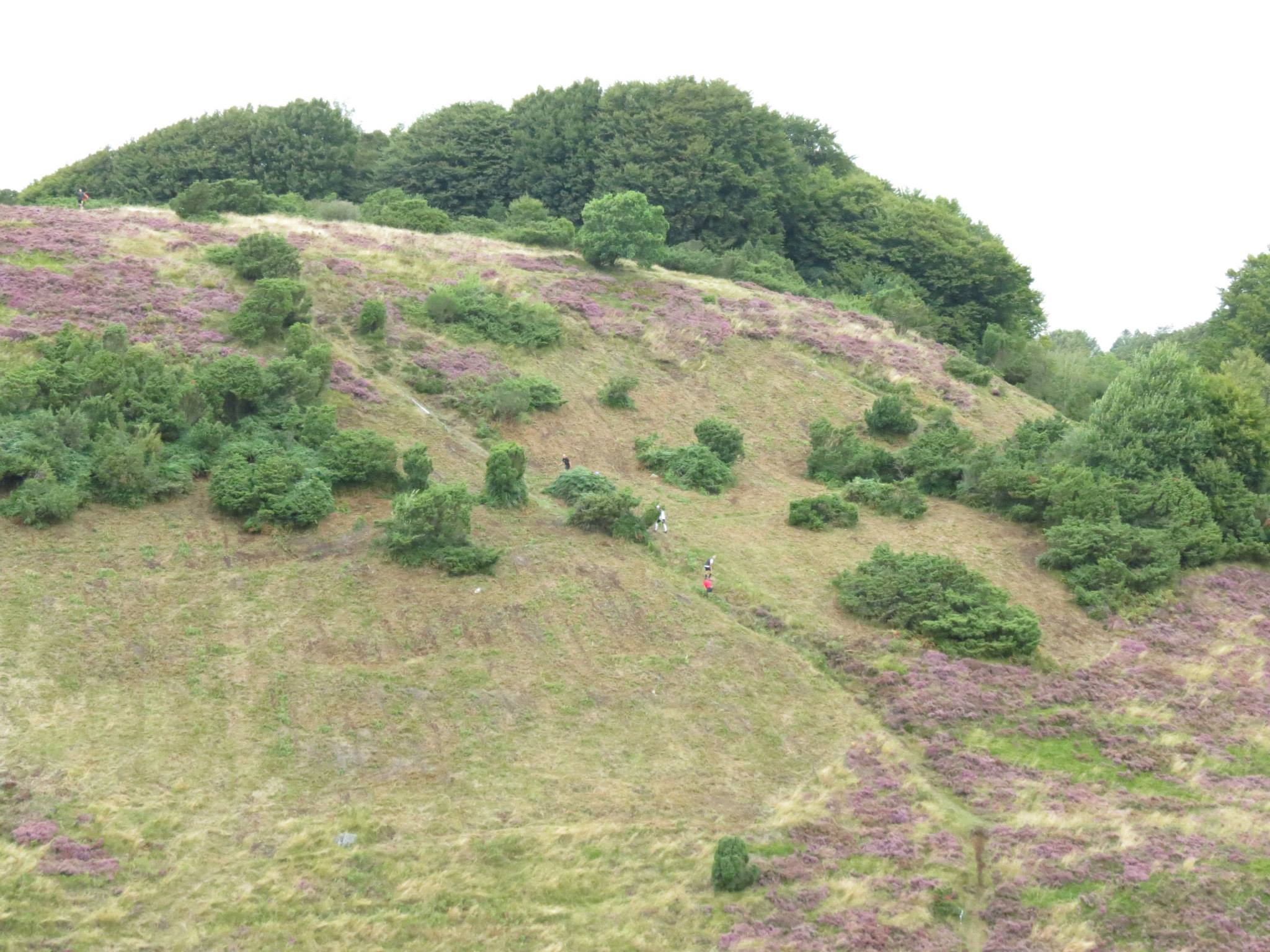 This hill packed a substantial part of the 840m height-meter-punch...