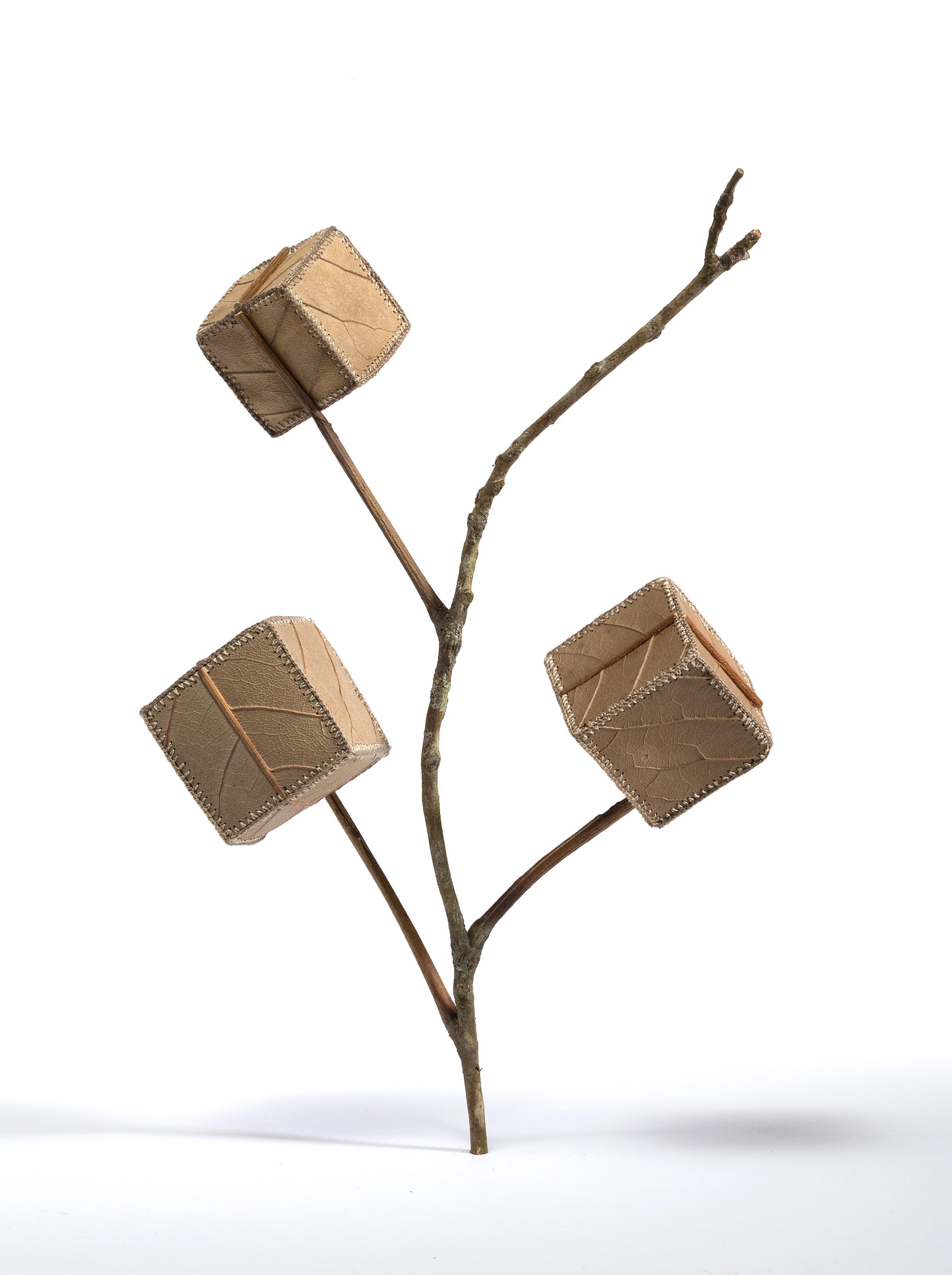 Cube Tree No.2