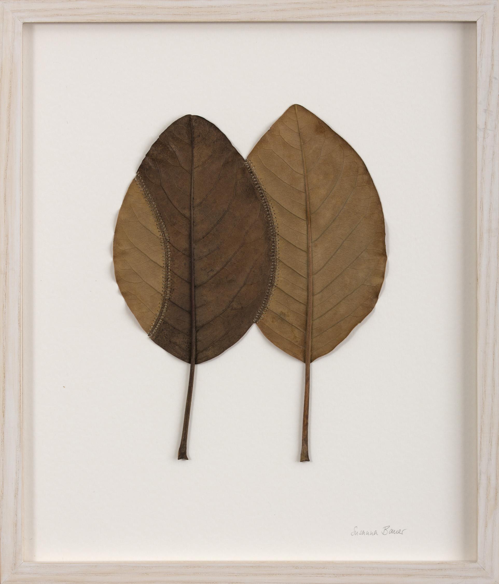 Hold   36.8 H x 31.4 W cm  magnolia leaves, cotton yarn  £ 400