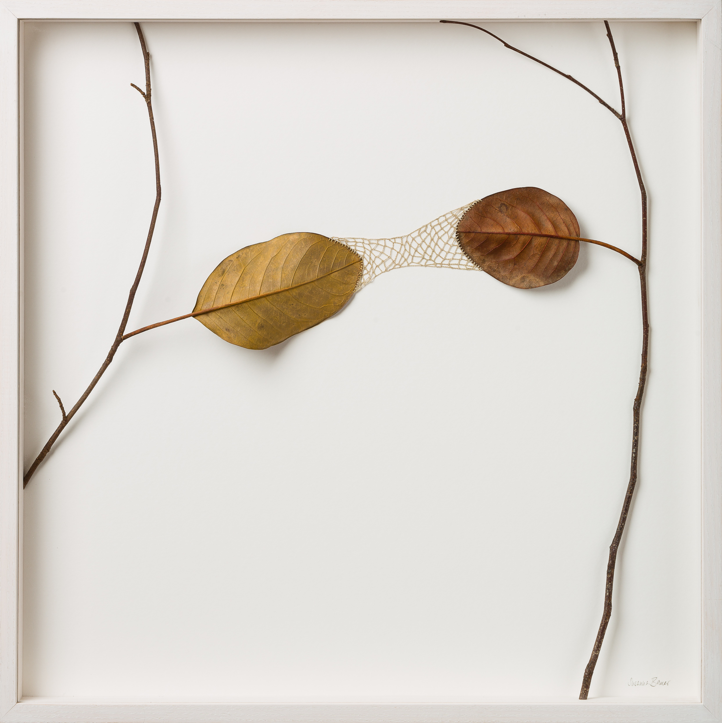 Reach   52 H x 52 W cm  magnolia leaves, cotton yarn, wood  £ 1,400