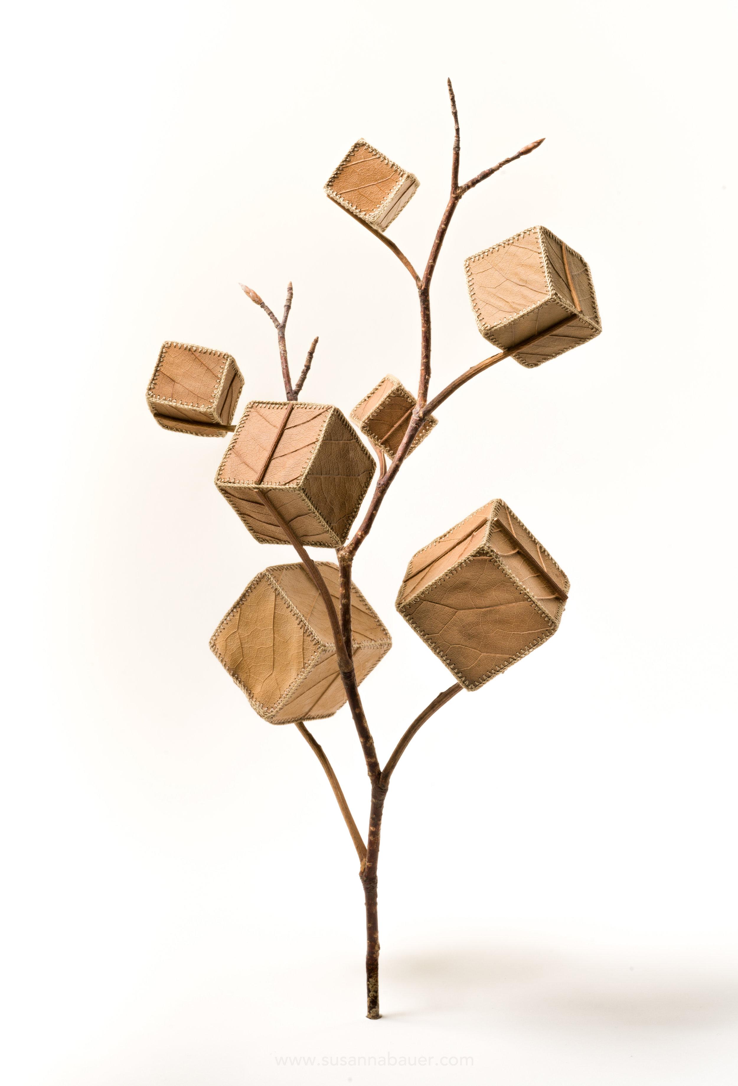 Cube Tree No.7