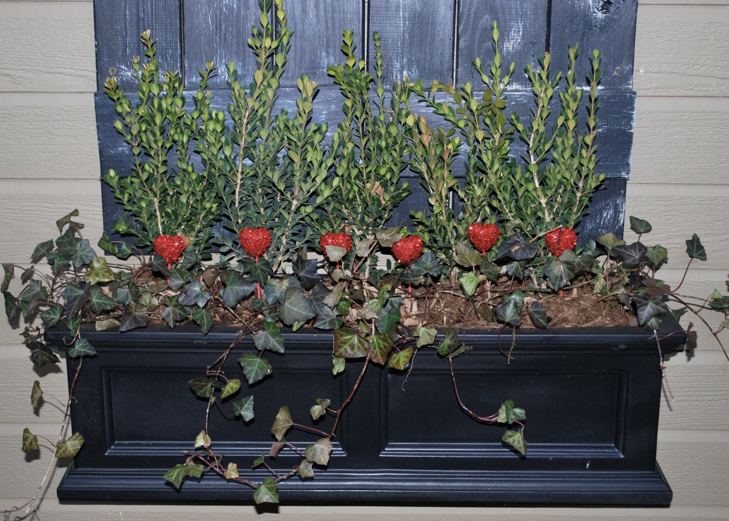 Seasonal decor in pots - why not?  I don't know about you, but I really miss COLOR in my outdoor planters. Why not add some cute, colorful Valentines decor to brighten things up? I added some sweet red hearts to my window box and it's pretty festive. By the time Easter rolls around, it will be warm enough for flowers to survive in our outdoor pots, but you can always add some Easter decor too. My favorite seasons to add decor are fall and Christmas. I love adding pumpkins to my pots in the fall, sadly sometimes the squirrels love it also. Fun decor options for holiday pots are pinecones, berries, red twig dogwood sticks and ornaments. Be creative and have fun with it!