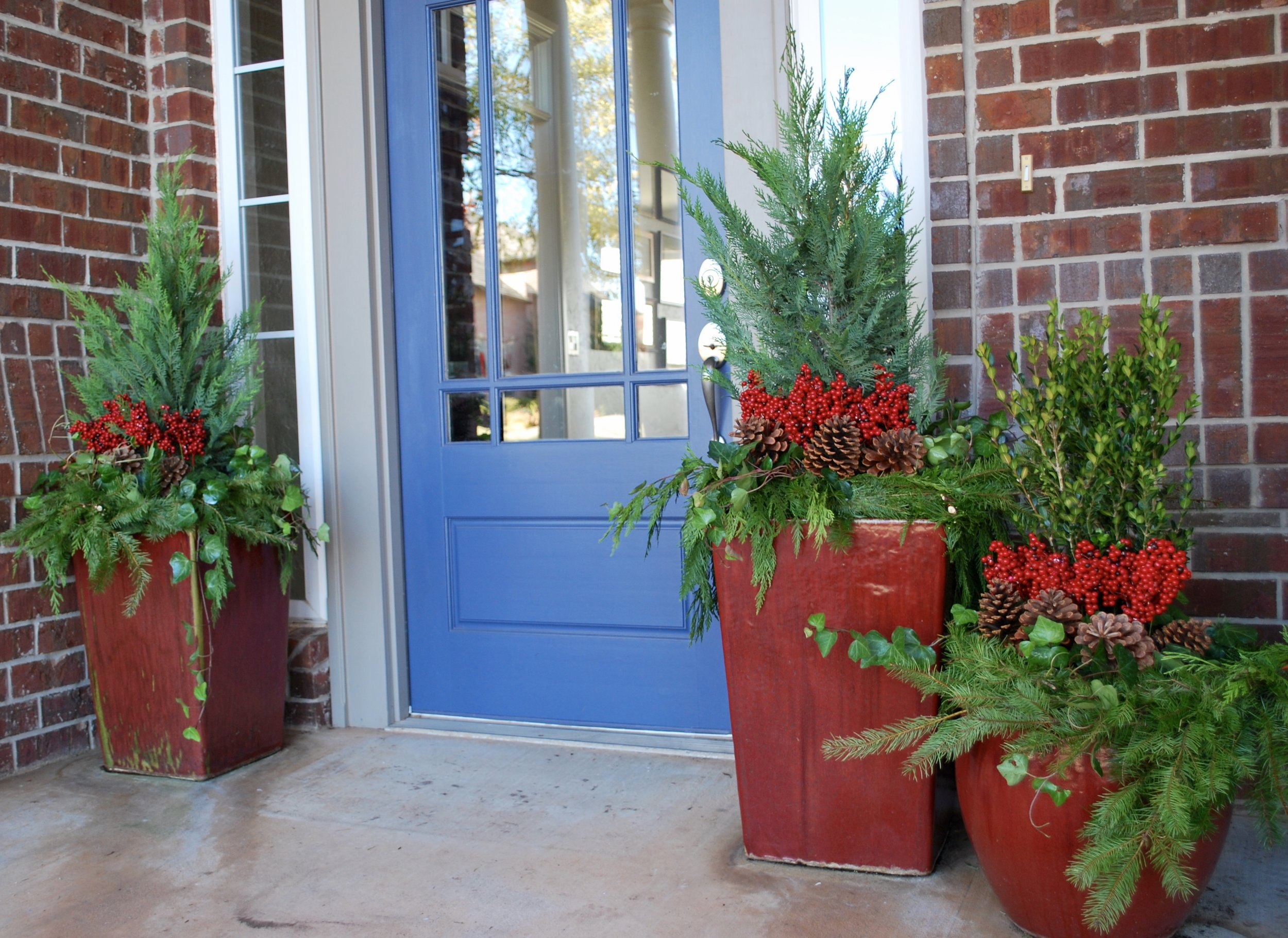"""Holiday Container GARDEN Design 101   Hooray! The holidays are almost here! Time to get your front entry and outdoor planters looking festive for the season.  Let's talk holiday container garden design. We use the """"thriller, filler, spiller"""" design theory. The """"thriller"""" is the one tall plant in the middle that gives the arrangement height. Evergreens are our """"thriller"""" of choice for winter planters, but other good """"thriller"""" options are red or yellow twig dogwood sticks or birch poles. Depending on the size of the planter, some good evergreen options are leland cypress, boxwood, juniper and dwarf alberta spruce. Next comes the """"filler"""" which fills in around the middle of the planter. Our favorite """"fillers"""" for the holidays are pinecones, berries and ornaments. Lastly, come the """"spillers"""" which cascade over the sides of the planter. Great """"spiller"""" options for winter are english ivy, vinca minor and/or fresh evergreen garland. If you use fresh garland or any live evergreen branches make sure to spray them with Wilt-Pruf when you do the installation and keep them misted with water throughout the holiday season so they don't dry out.  In the picture above, we've used 2 leland cypress and boxwood as the thrillers, pinecones and berries as fillers and ivy and garland as spillers. Doesn't it look festive for the holidays? Once the holidays are over, just remove the pinecones, berries and garland and the evergreen and english ivy will look great all winter long."""