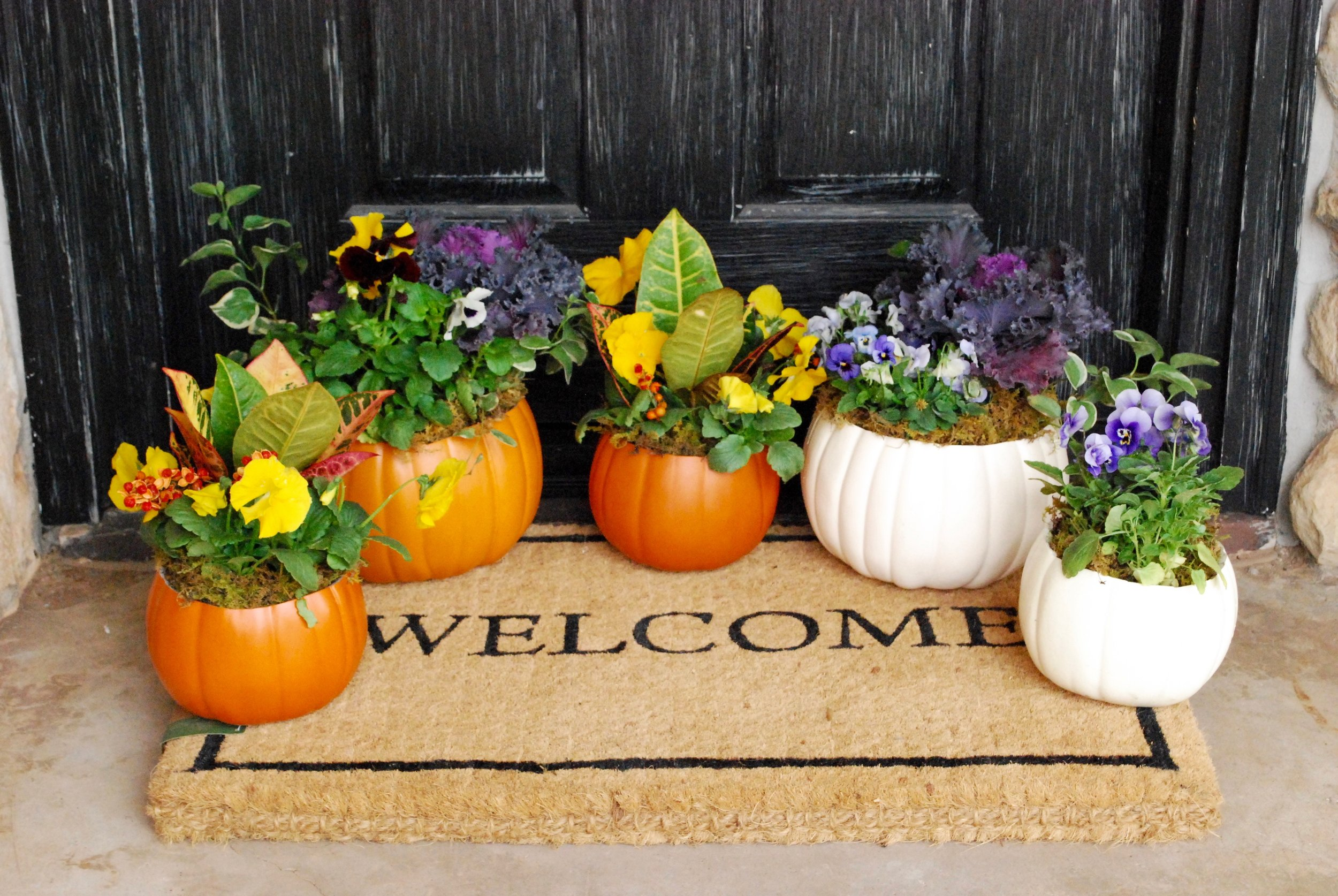 Faux Pumpkin Centerpieces    These pumpkin centerpieces make great teacher or hostess gifts! The small pansy filled faux pumpkin is $18 and the large flower filled faux pumpkin is $35. We're taking preorders now so give us a shout if we can pot some up for you this fall.