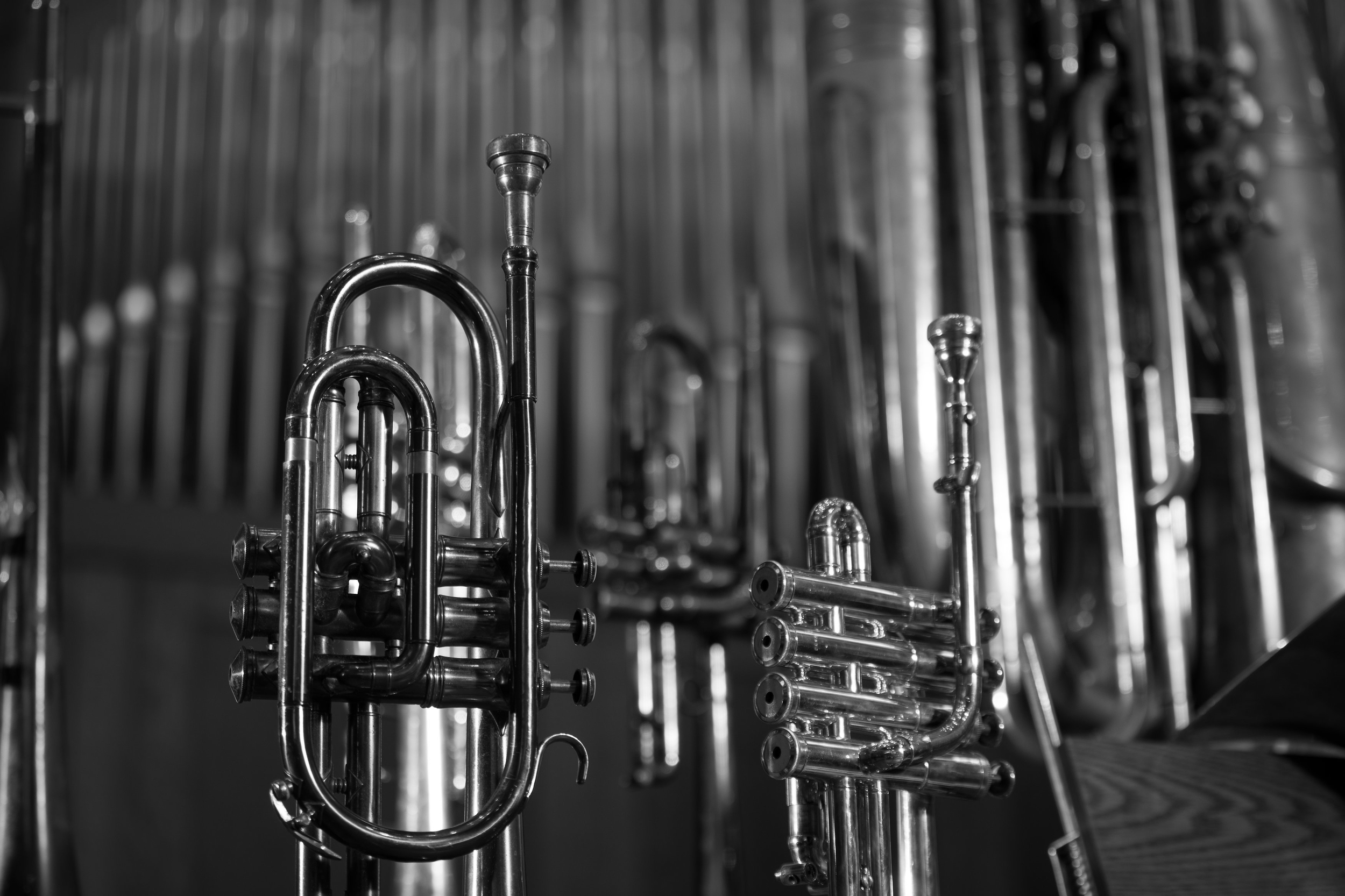 Brass with organ pipes.jpg