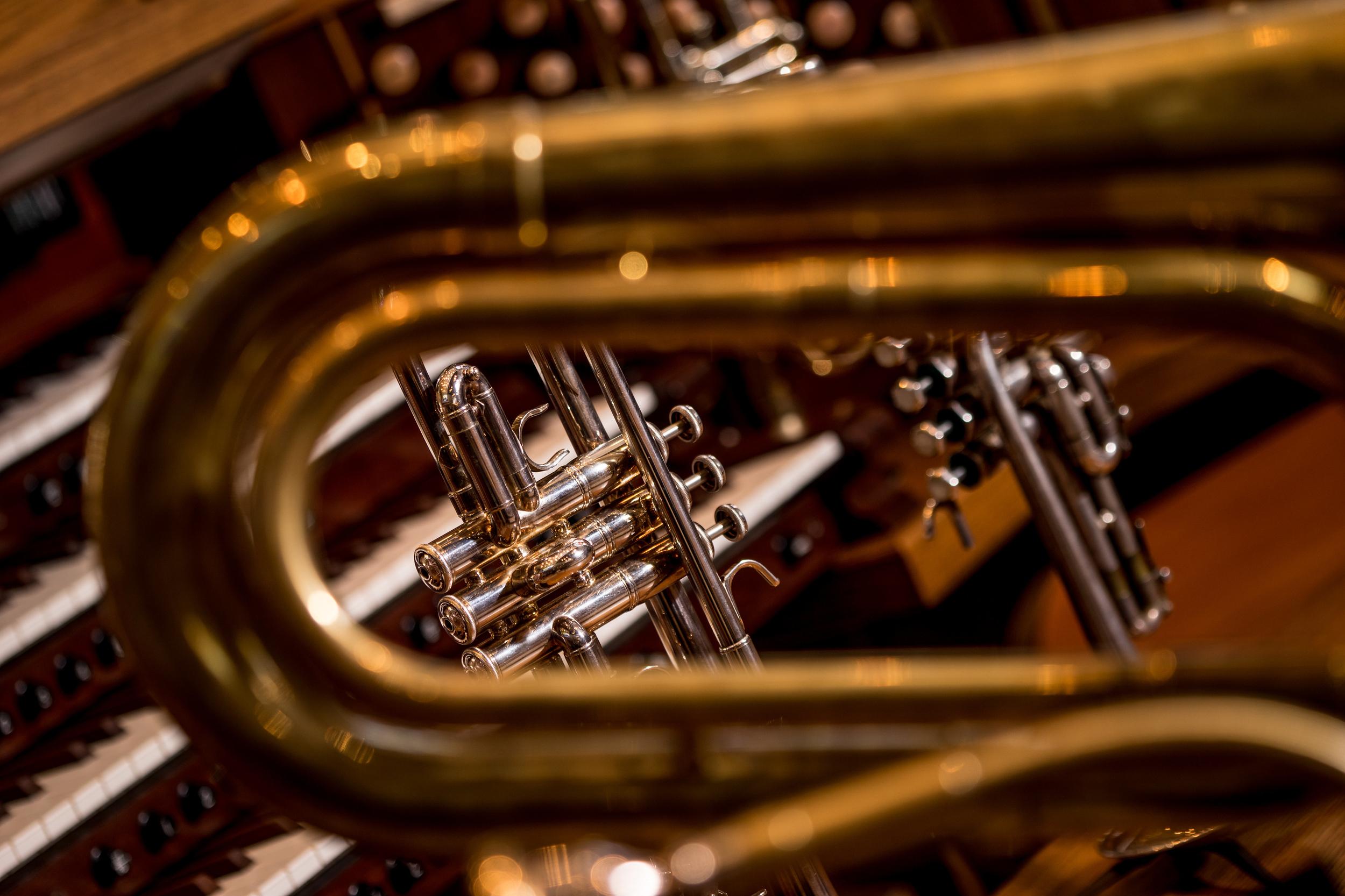 closeup brass & organ color.jpg