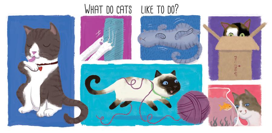 Cats slide_2.jpg