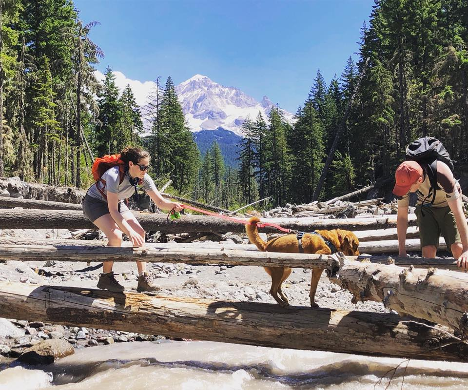 Sarah, Avery, and Andy hiking Mt. Hood in Oregon!