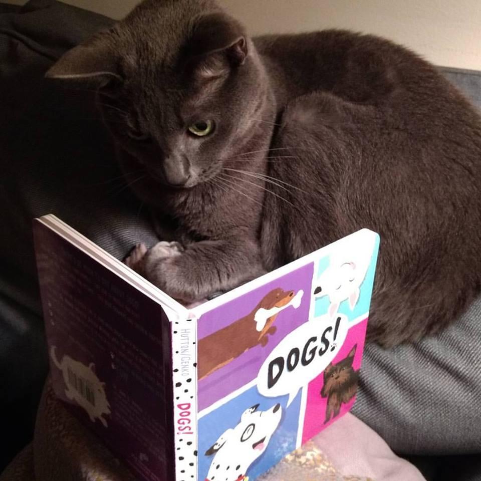 George reading.jpg