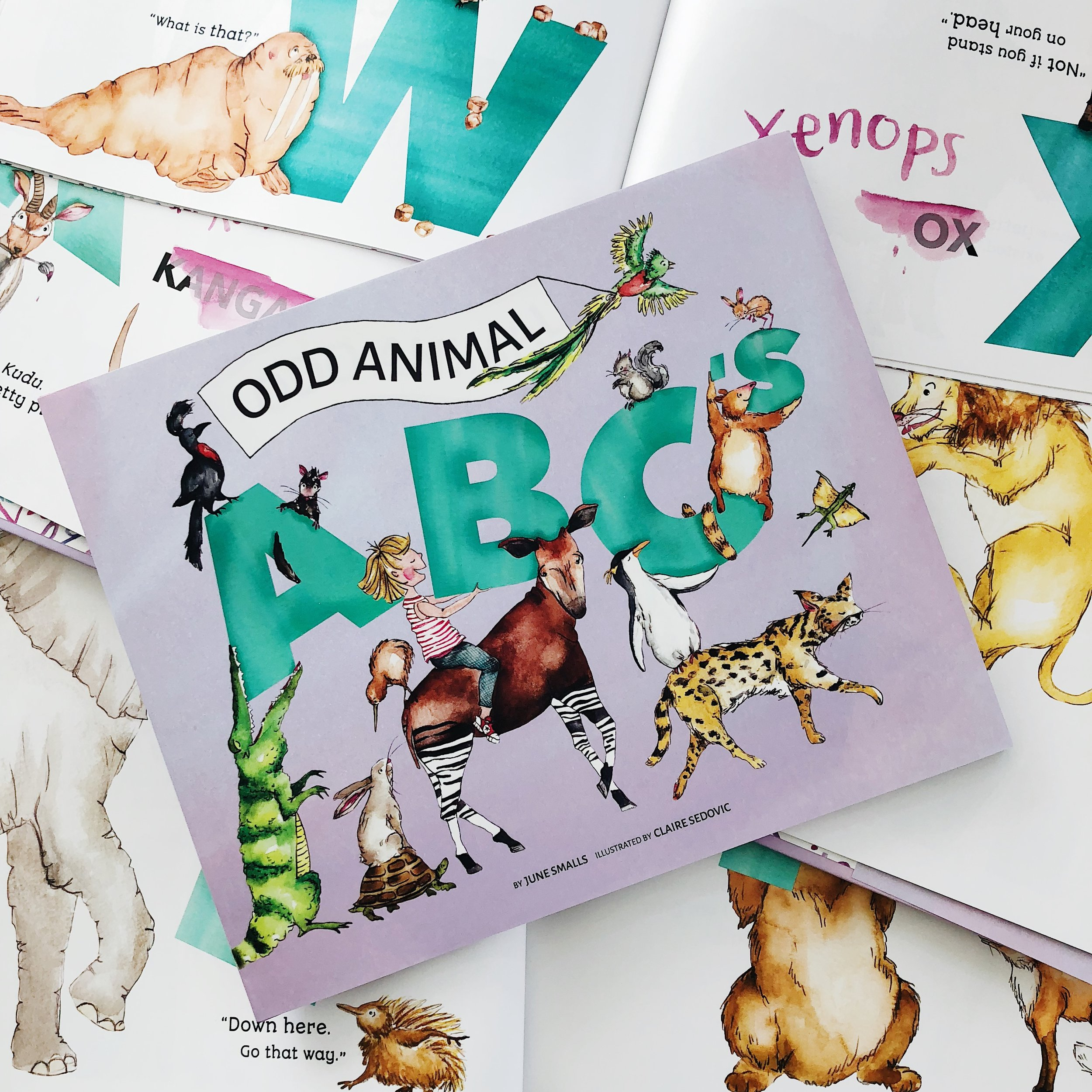 Odd Animal ABC's   written by June Smalls and illustrated by Claire Sedovic