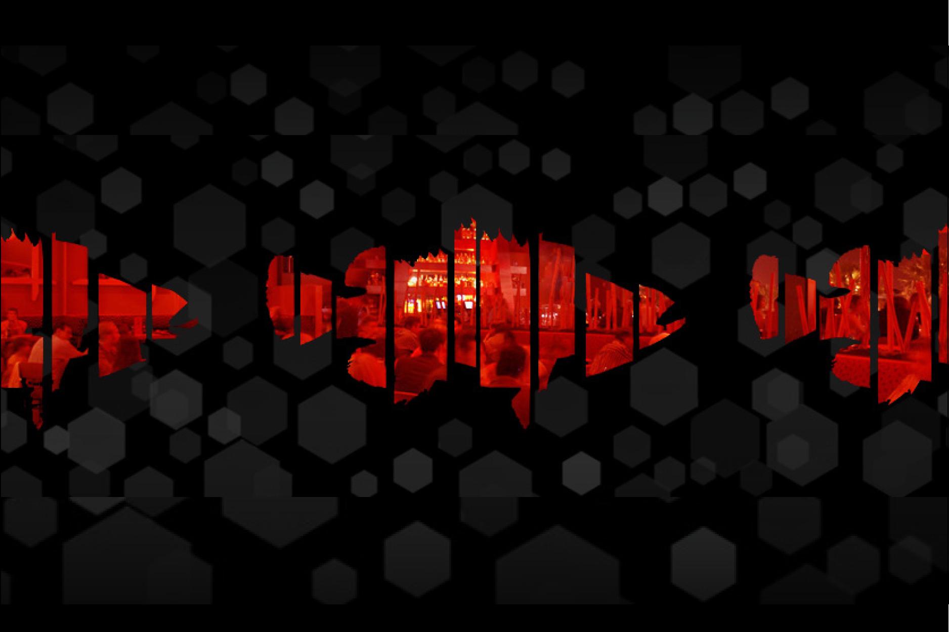 NS_Portfolio2014_082014-rafish.png