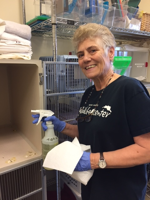 Linda-Retired RN-Volunteer