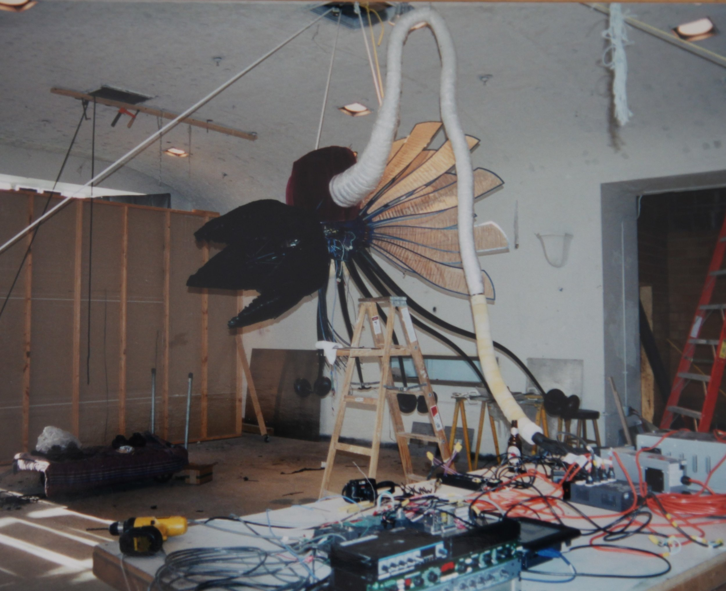 Sound and movement testing in the studio.