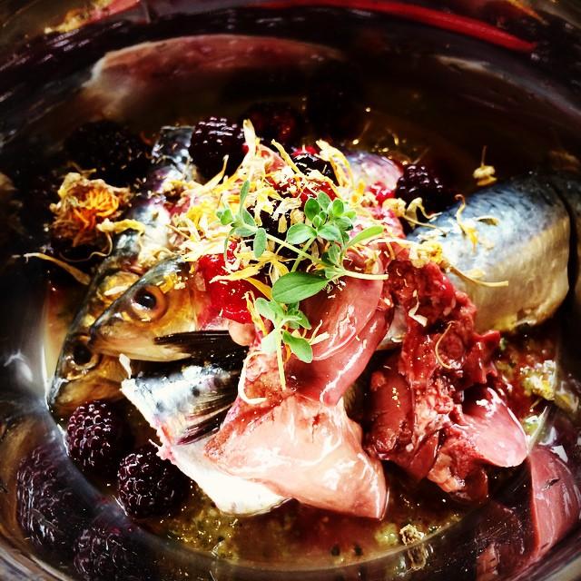 Fresh sardine and organic chicken liver, YUM!