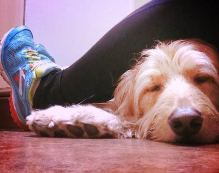 Sitting with Mason on the floor of the Emergency Vet!