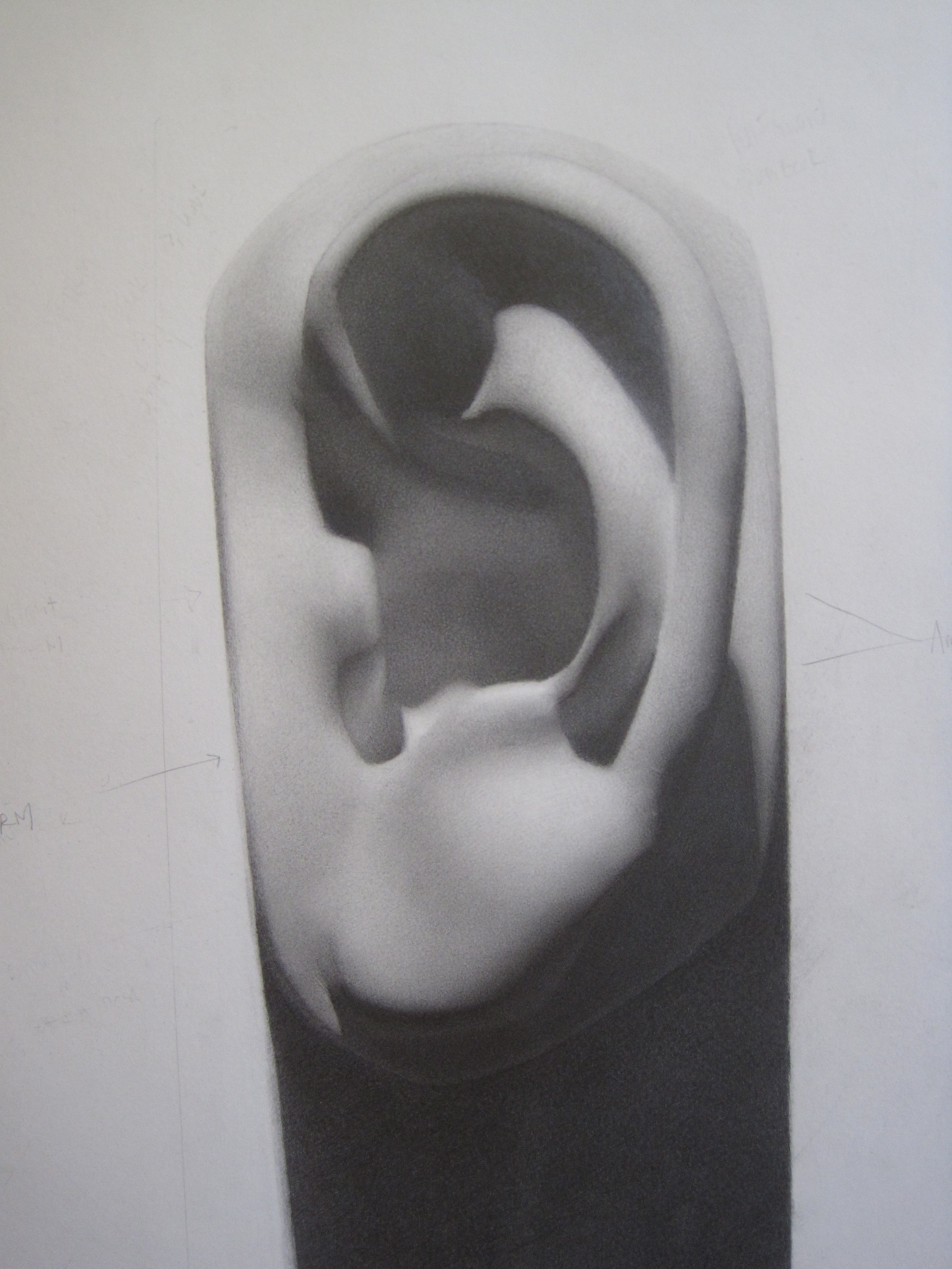 Cast Drawing 2 in Pencil