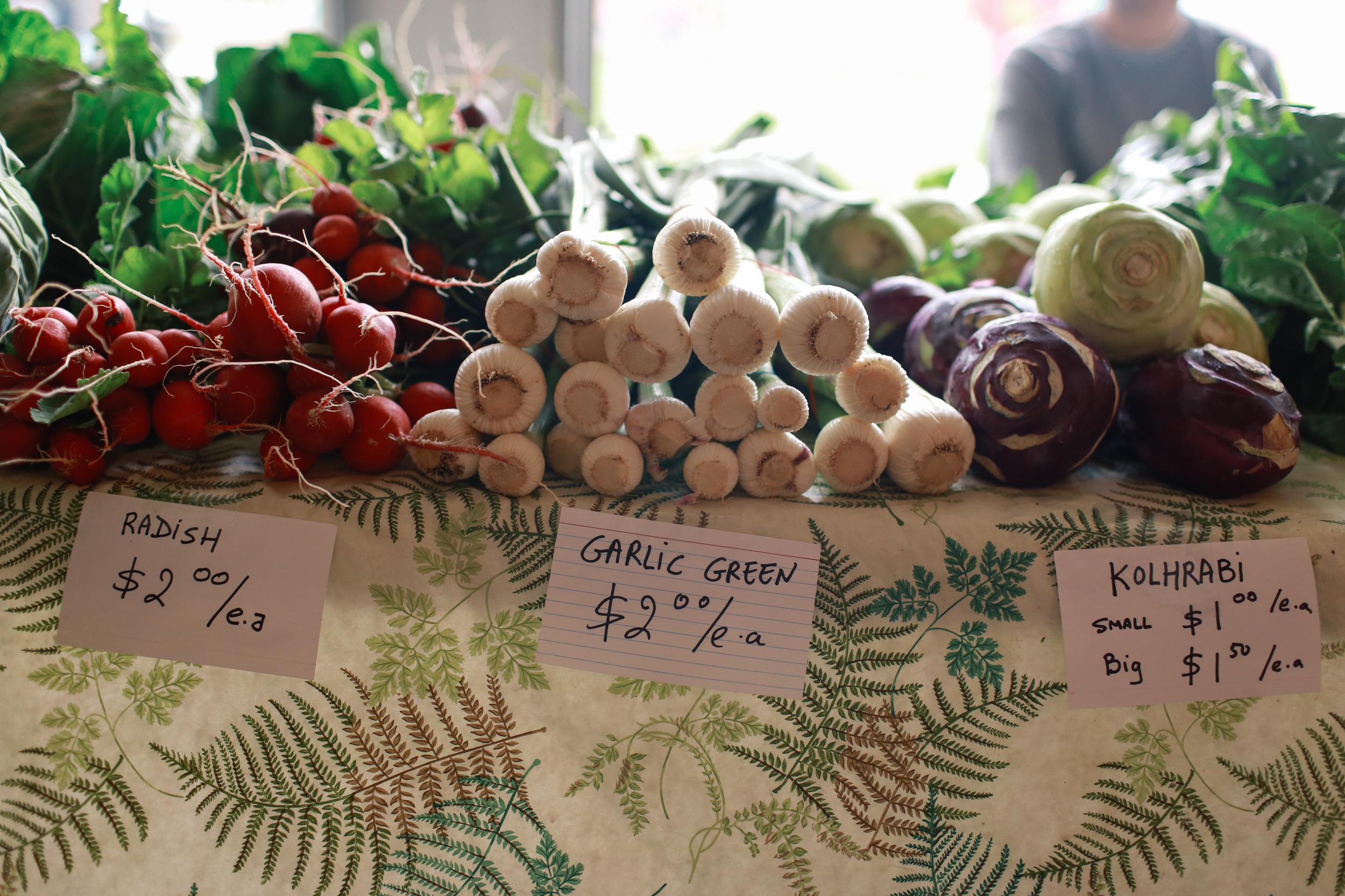 farmers_market-14.jpg