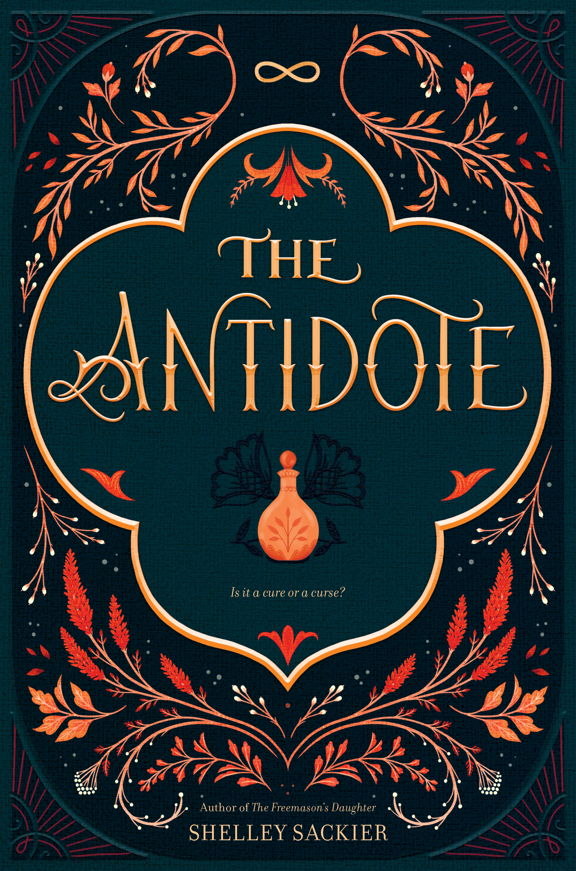 The Antidote by Shelley Sackier cover.jpg