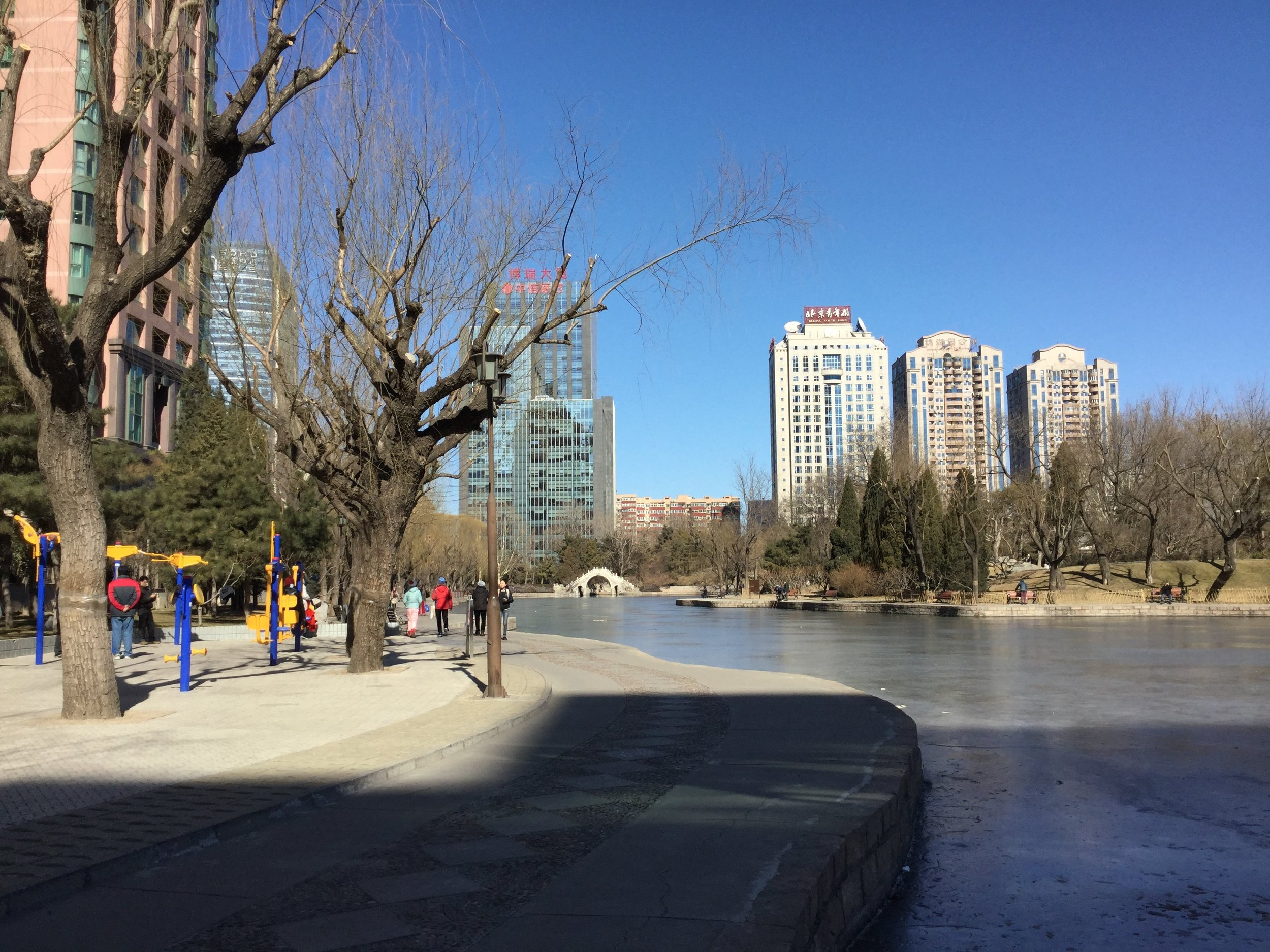 I spent my first full day in Beijing exploring Tuanjiehu Park, taking in the sun and the crisp air. It was so lovely to watch people during their group dance classes and using the outdoor exercise areas. My favourite memory is seeing a grandfather showing his son and grandson how to do chin-ups.