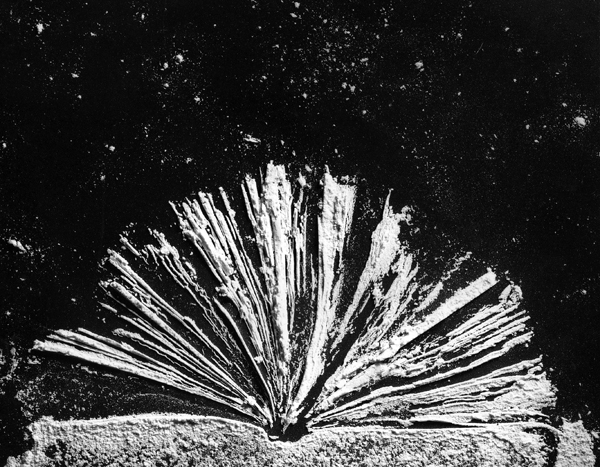 """Impression of a book in flour    1999,  20"""" x 24"""", Siver print"""