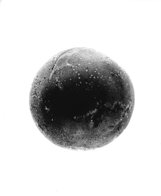 """Globe  ,  2000, 24"""" x 20"""", Unique Silver print"""