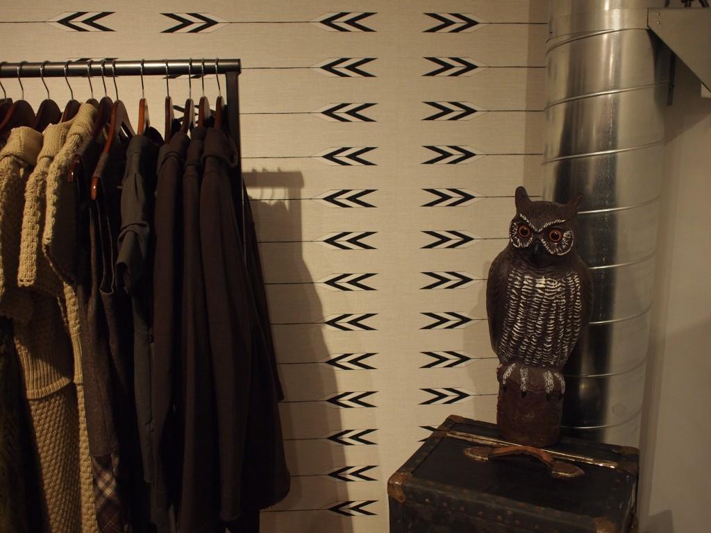 owl1-1024x768.jpg