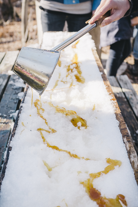 Cbane à sucre Chassé-0414-80.jpg