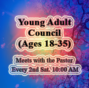 Young Adult Council Main.png