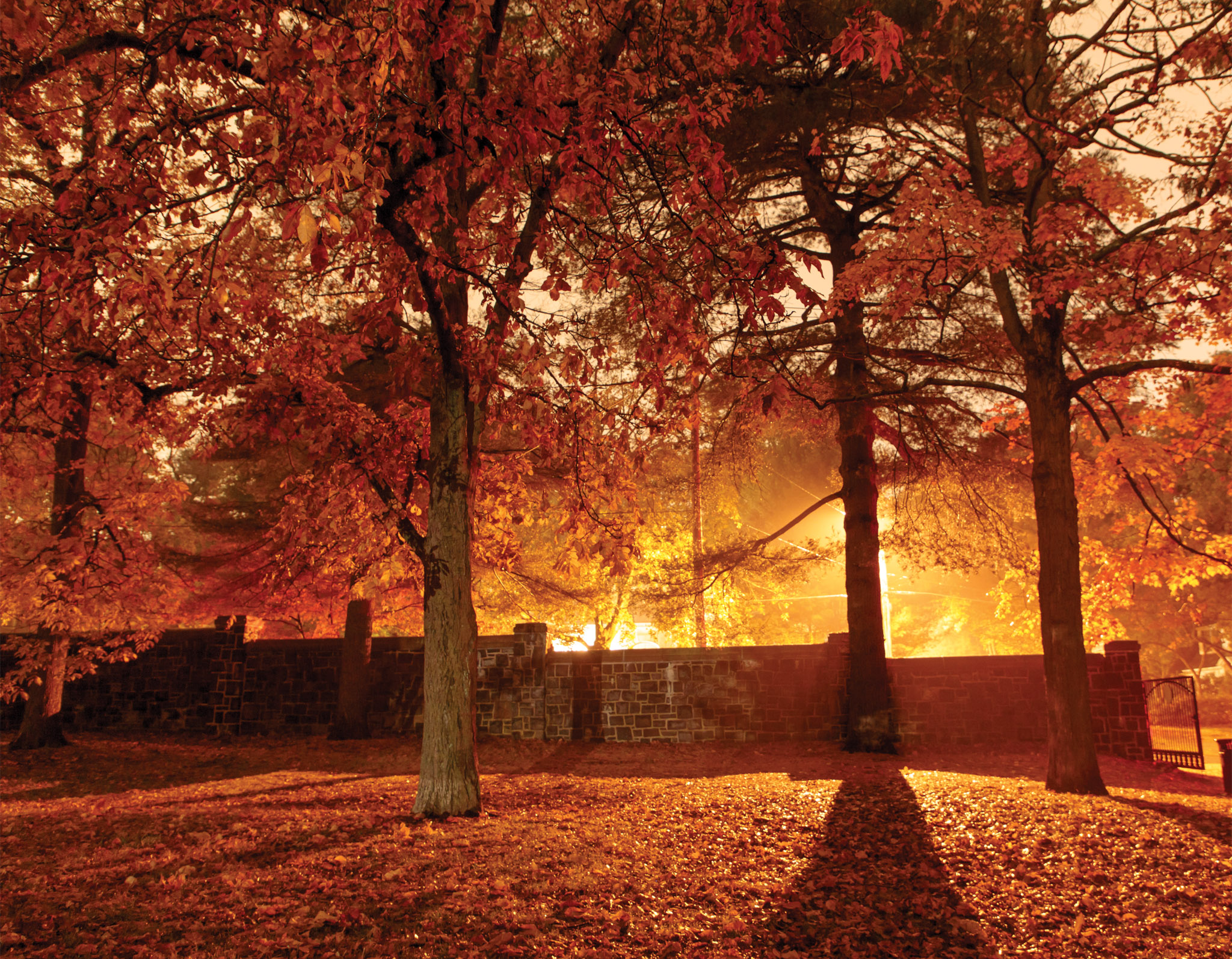 November: Edgerton Park