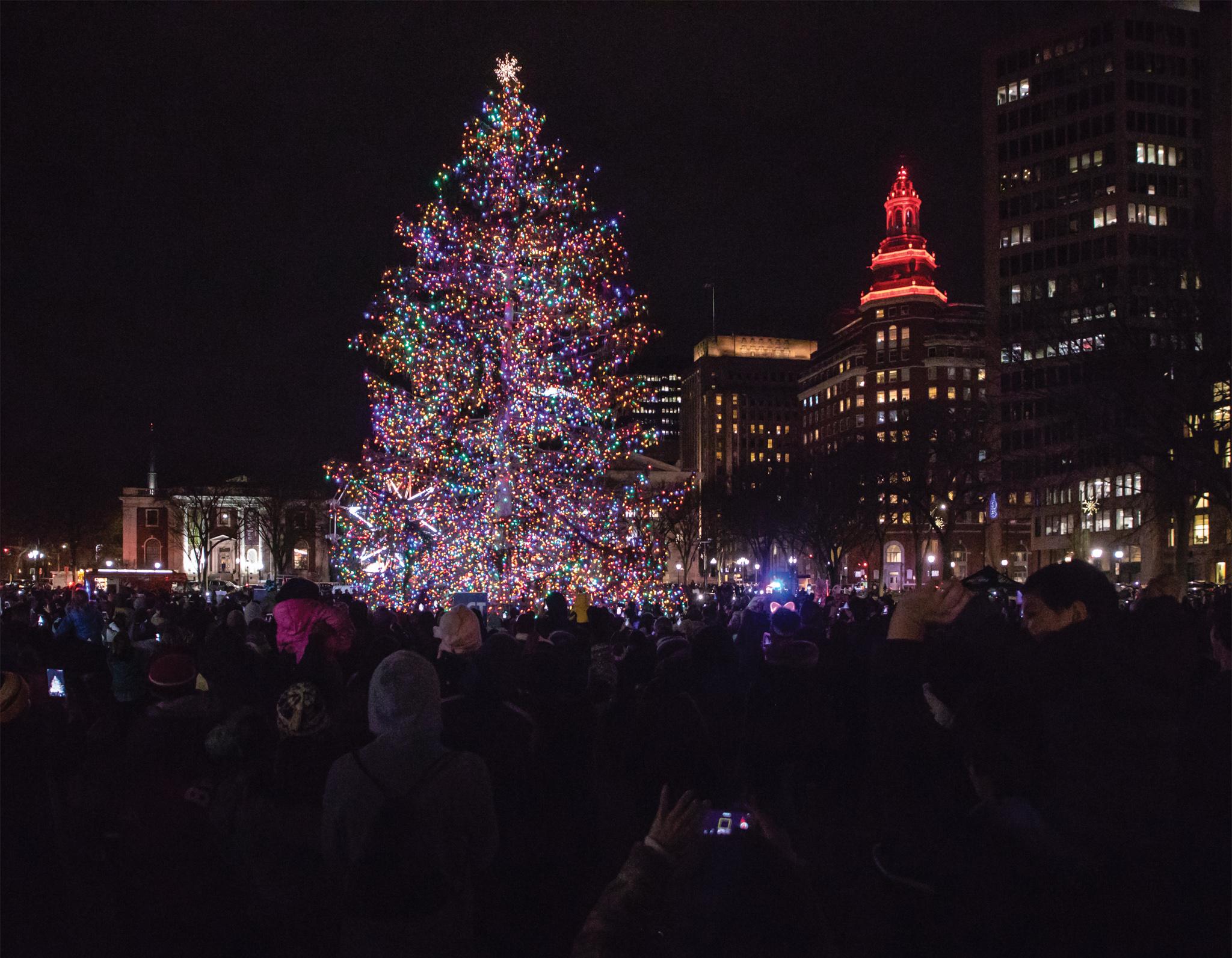 December: New Haven Green Tree Lighting