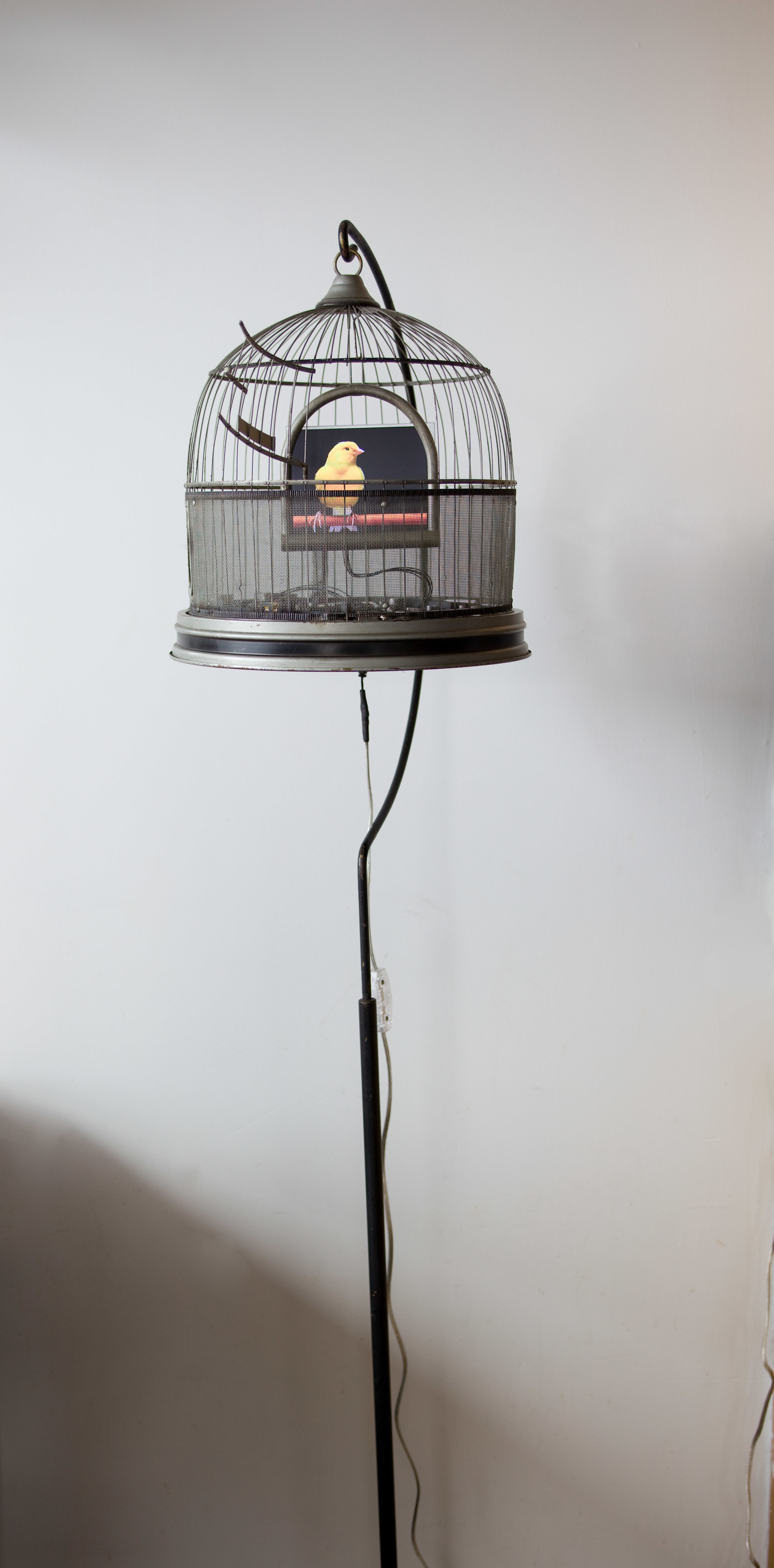 Bird cage with stand.