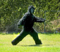 gorillasuit.jpg
