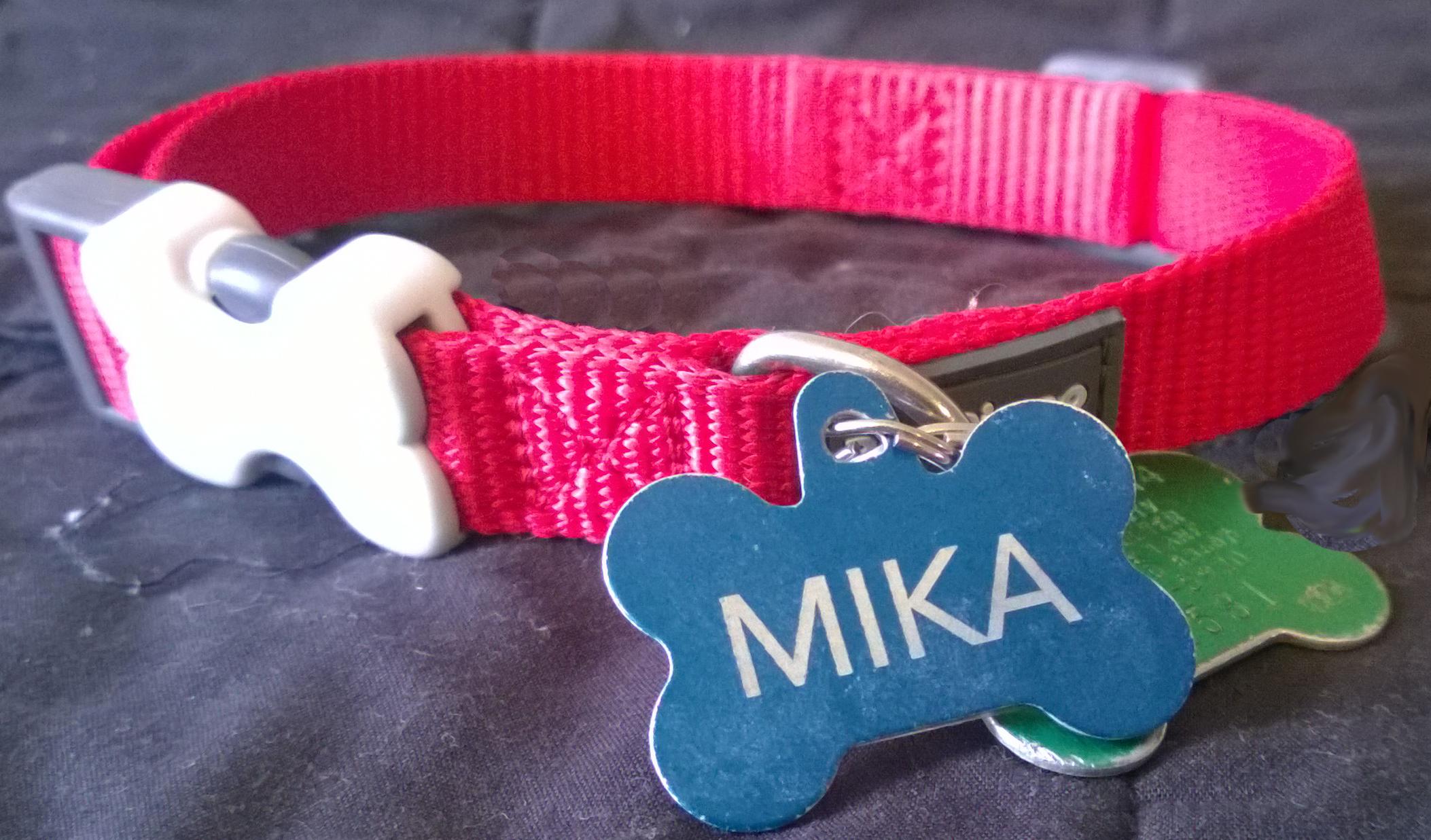 Clerical collar of Spiritual Director Mika