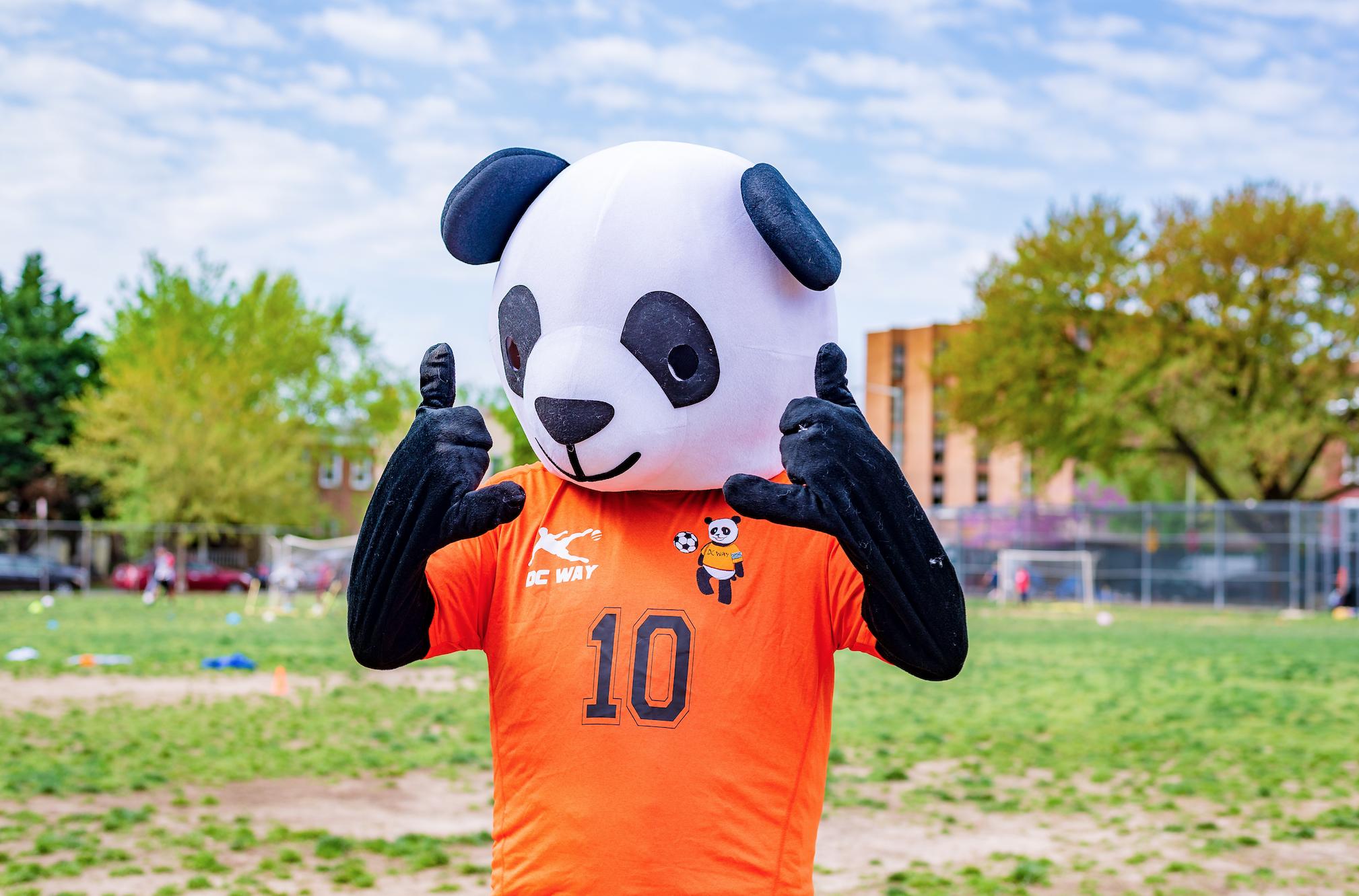 Panna the Panda!