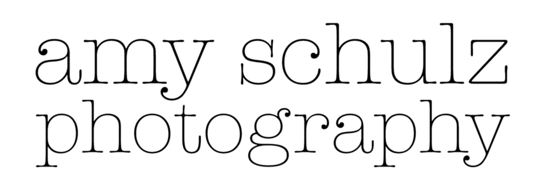 Amy Schulz Photography logo.jpg