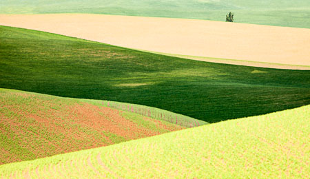 Abstract pattern of the rolling hills of the Palouse